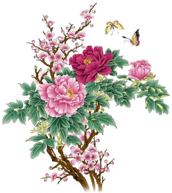 花鸟国画的技巧   如何选择国画的材料