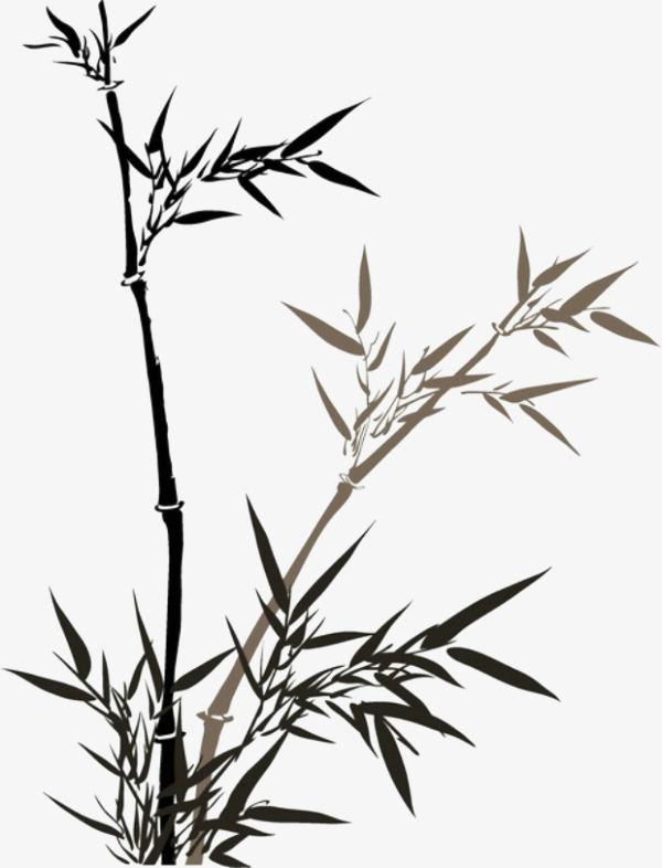 国画竹子有哪些绘画技巧    国画竹子在用色方面需要注意什么