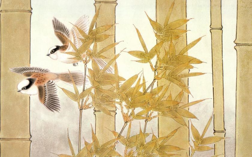 初学者如何快速学会画国画花鸟   国画花鸟的画法技巧
