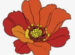 写意菊花的绘画技巧详解    历代文人笔下的菊花是什么样的