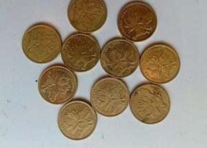 2005年5角硬币收藏价值   2005年5角硬币价格多少