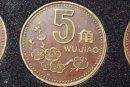 2000年的五角梅花硬币值多少钱   2000年的五角梅花硬币投资分析