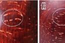 小叶紫檀满金星真假 小叶紫檀满金星真假鉴别