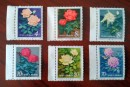 T93月季花邮票 价格(套票)