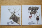 T132麋鹿邮票 T132麋鹿邮票无齿票真僞鉴别