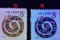 T133己巳年郵票 真假鑒別對比