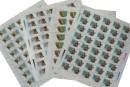 T161野羊郵票 大版張價格圖片