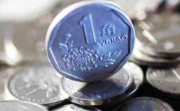 一角菊花硬币激情小说价格表 一角菊花硬币值10000元?