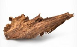 沉香功效作用與主治 沉香的藥用功效主治