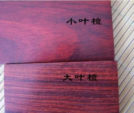 大叶紫檀和小叶紫檀的区别 怎么鉴别