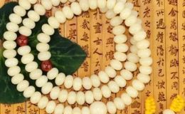 菩提根为什么有绿色的 菩提根的作用与功效