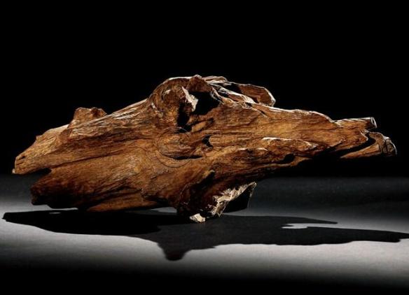 千年沉香木图片 千年沉香木是怎样的
