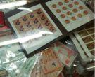 上海卢工邮币卡市场行情 最新行情