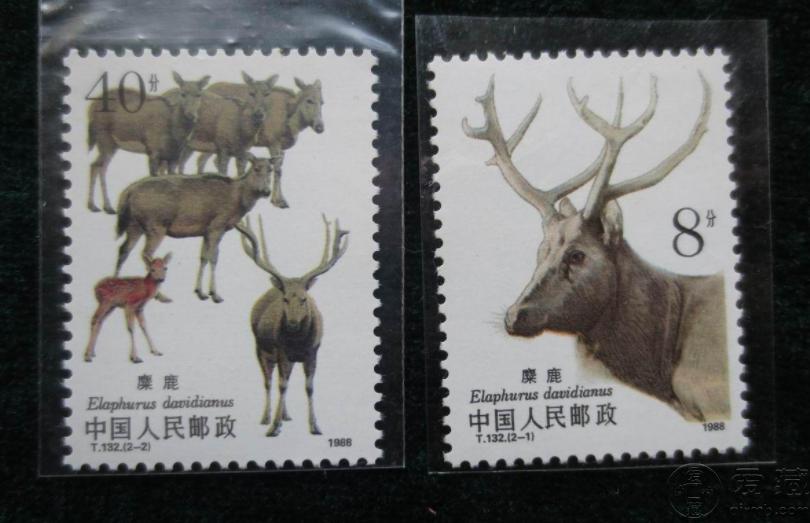 T132麋鹿邮票价格 大版票价格图片