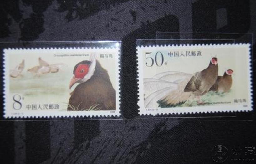 T134褐马鸡邮票价格 大版票价格