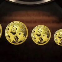 熊猫金币2021版价格 熊猫金币2021版套装价格