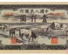 """1951年马饮水1千元""""香味四溢"""""""