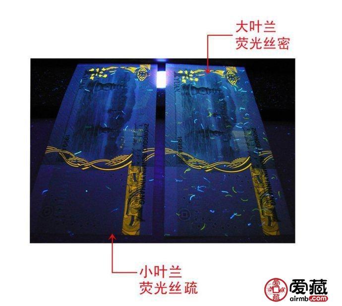 大叶兰和小叶兰的荧光丝背面辨别图