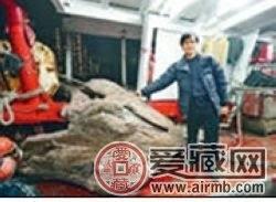 香港渔民疑捞到过亿沉香木