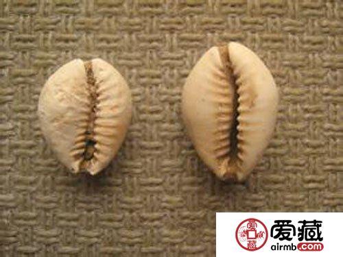 中华钱币的历史与文化魅力