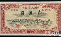 收购1951年一万元骆驼队价格