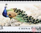 这几类邮票能成为新手的入门首选