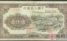 收购1951年5000元牧羊行情