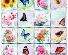 花卉个性化邮票,纸上开花的美丽故事