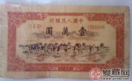 1951年10000元駱駝隊票樣長什么樣子 適不適合投資