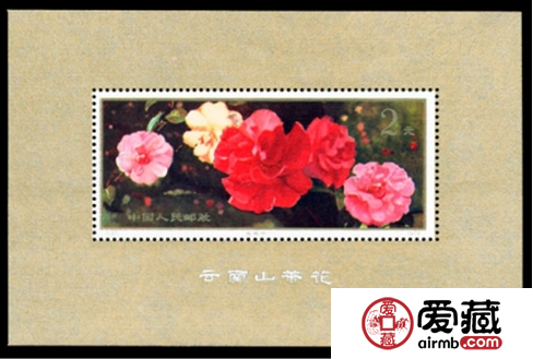 T37M云南山茶花小型张的激情小说行情分析