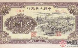 扑朔迷离的五千元面值羊群图案纸币