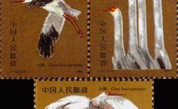 珍稀动物邮票白鹤