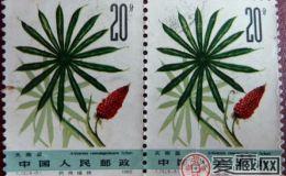 激情电影T72 药用植物(第二组)是比较不错的