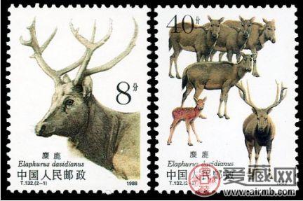 T132麋鹿(有齒)郵票的收藏價值分析
