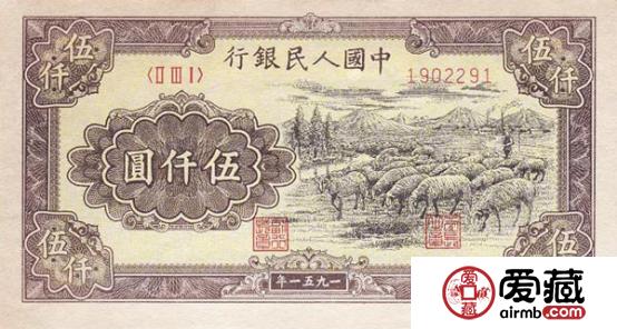 51年5千元绵羊价值不菲