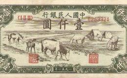 51年1000元马饮水