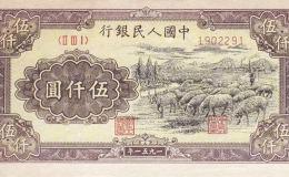 51年5000元牧羊