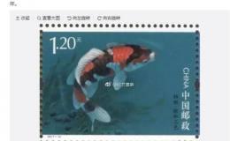中国锦鲤邮票或因选了日本种推迟发行 这种临时措施确实罕见