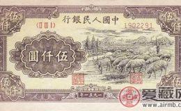 1951年5000元牧羊票样