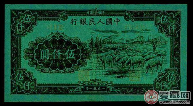 51年5千元绵羊市场行情
