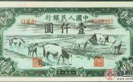 1951年壹仟圆牧马饮水