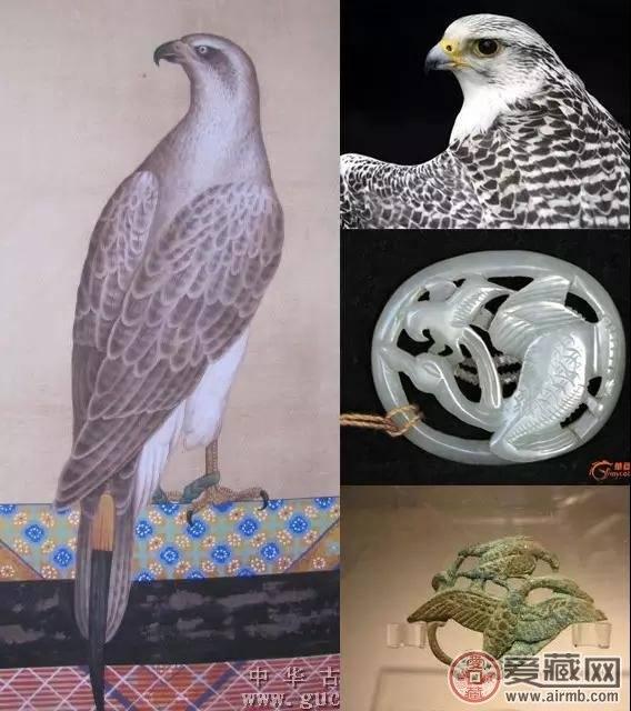 """航天钞背面图案设计者:关于图中的那只""""鸟"""""""