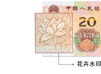 2019版第五套人民幣20元花卉有什么變化 2019紙幣花卉都是什么