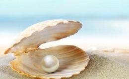 珍珠价格一般多少 普通珍珠价格
