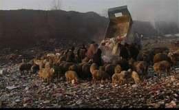 《垃圾围城——王久良之观察》研讨会发言