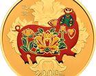 2013年5元纪念币价格和图片