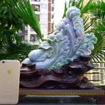390.350.170寸精美春带彩 大件白菜翡翠摆件