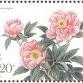 《芍药》特种邮票图片鉴赏