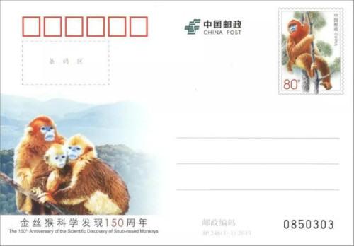 4月27日中国邮政将发行《金丝猴科学发现150周年》纪念邮资明信片