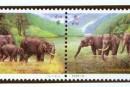 1995-11《中泰建交二十周年》假漏金邮票的真僞鉴别